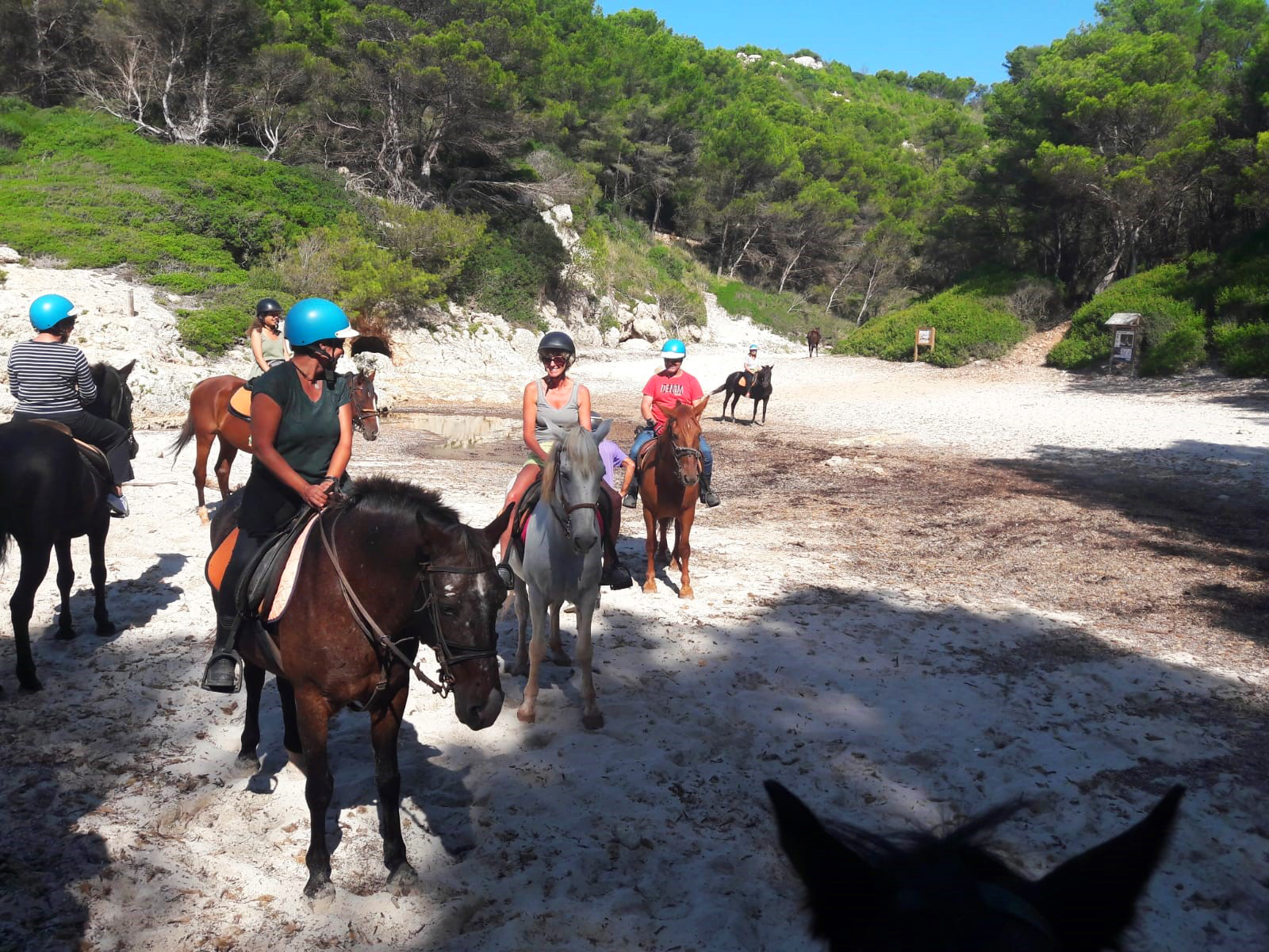 Horseriding in Menorca