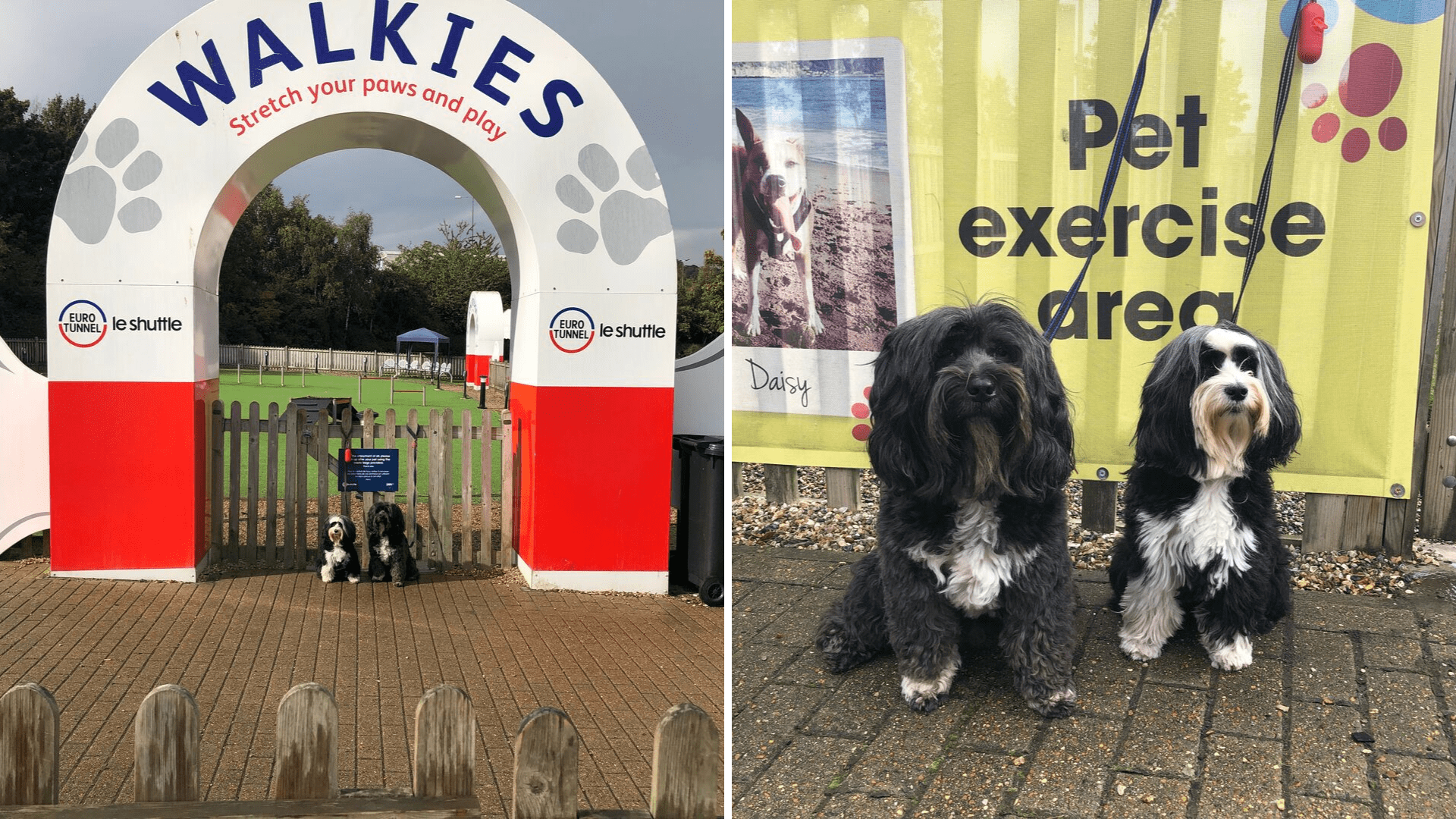 Walkies Play Area at the EuroTunnel for Dogs