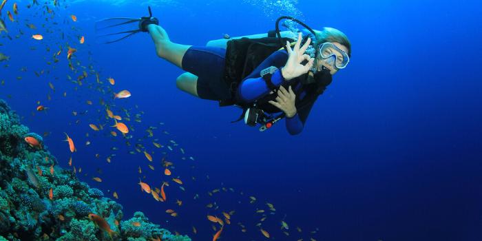 Scuba Diving in Menroca - Activities
